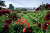 Parham House and Garden jigsaw puzzle