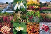 The Gardening Year jigsaw puzzle