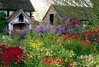 Eastgrove Cottage Garden jigsaw puzzle