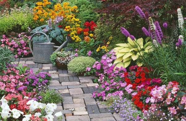 A colourful courtyard garden jigsaw puzzle for Small colourful garden ideas