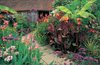 The Exotic Garden at Great Dixter jigsaw puzzle